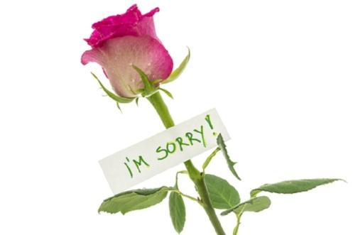 I'm Sorry Rose By © Gajus