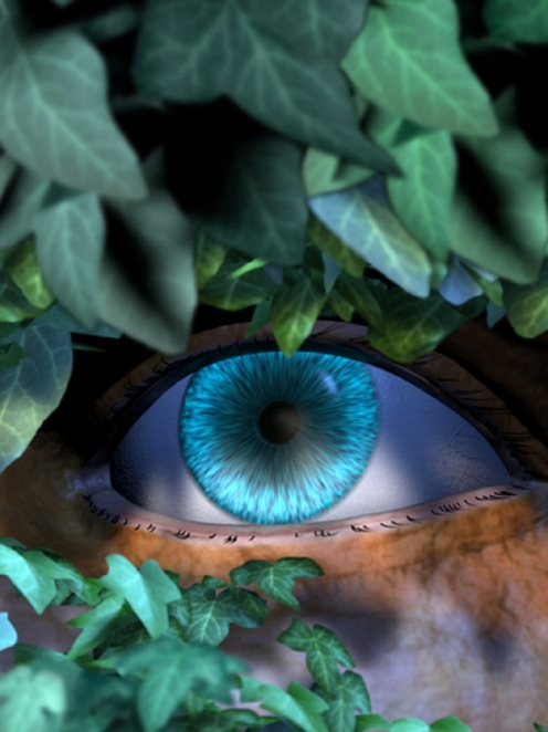 The Stalker - Blue Eye Behind Leaves - © Stefanie Winkler
