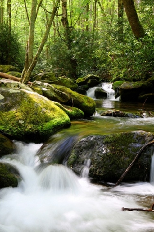 Waters Smoky Mountains © Carol R Montoya.jpg