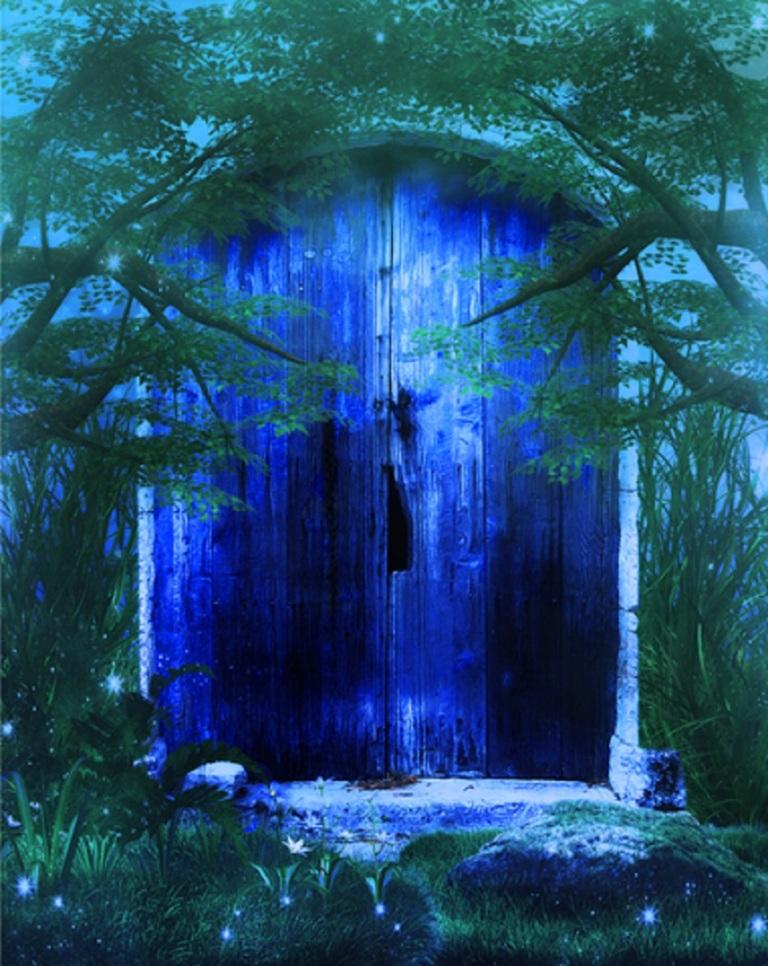 Fantasy Door In The Forest © Nelieta.jpg