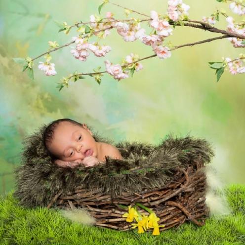 Springtime Newborn Baby © Photowitch.jpg