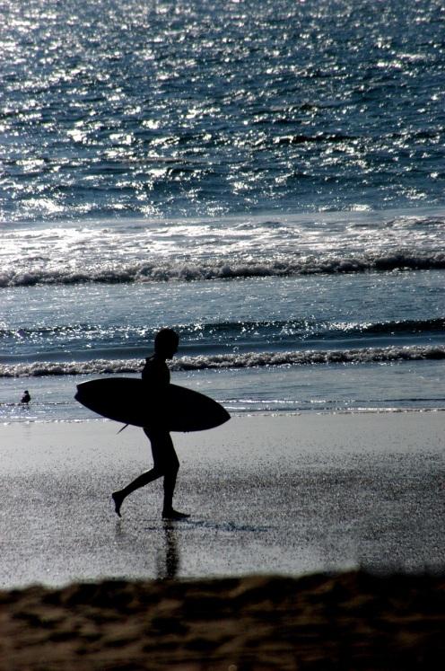 Surfer Walking On Beach © Mark Liedel.jpg