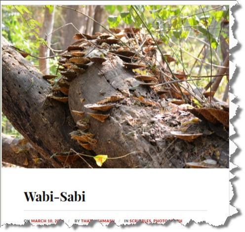 That Mishmash Wabi Sabi.jpg