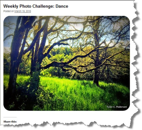 Tyler C Pedersen Dance